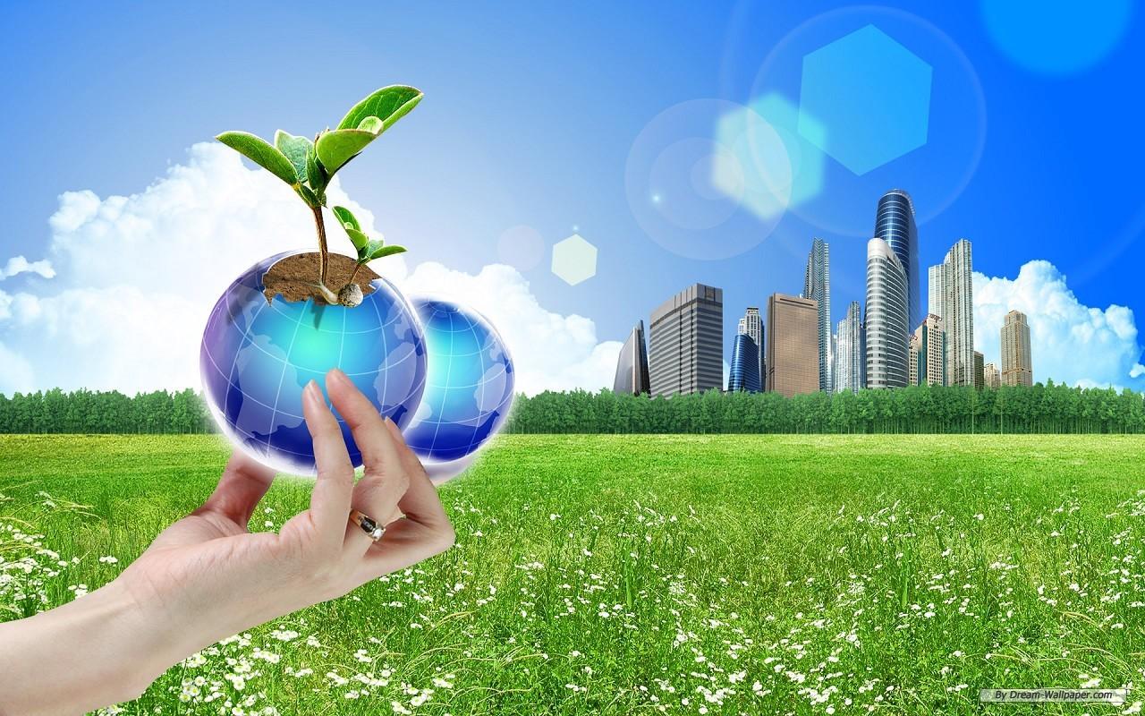 IB medio ambiente